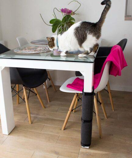 Drapaki dla kotów na nogę stołu - Panakota