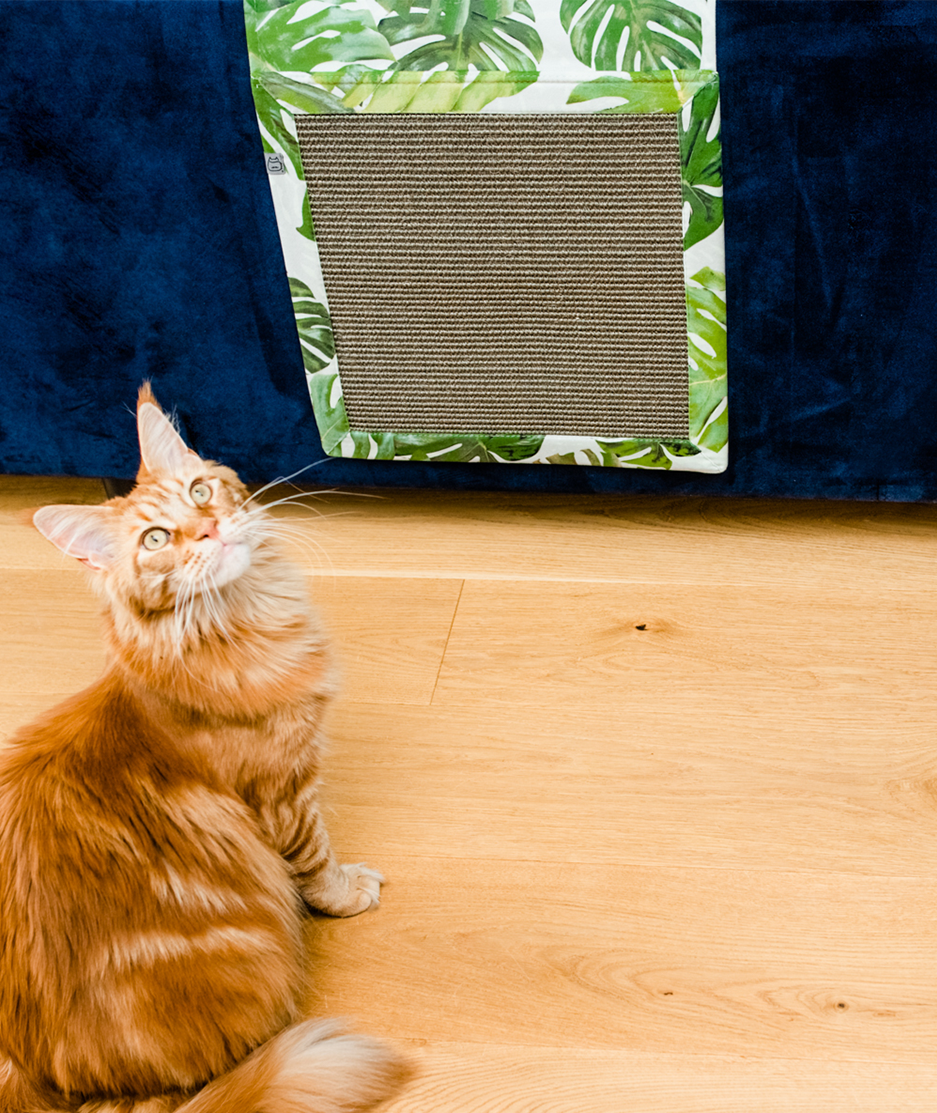 Panakota - mata dla kota wisząca hultaj z liścia
