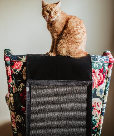 Drapak na kanapę dla kota Wisi mi to - Hrabia - Nocne harce panicza